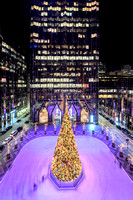 The Christmas tree at PPG Place in Pittsburgh