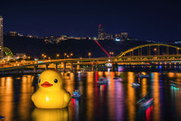 Giant Rubber Duck in Pittsburgh
