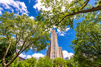 The Cathedral of Learning is framed by trees in Oakland