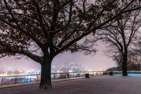 A tree on the West End Overlook frames Pittsburgh in the snow