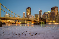 Geese on the ice on the Allegheny River in Pittsburgh at the blue hour