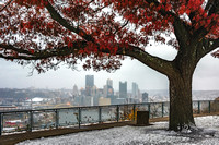 A tree on the West End frames Pittsburgh on a snowy morning