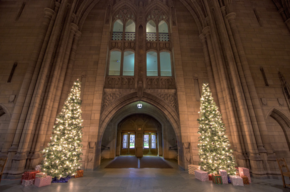 Christmas trees inside the Cathedral of Learning