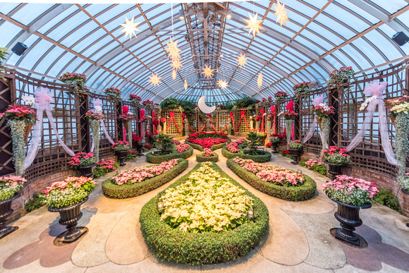 The poinsettia room at Phipps Conservatory