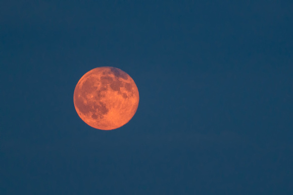 A bright red Pittsburgh Supermoon