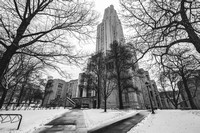 The Cathedral of Learning rises through the trees and the snow