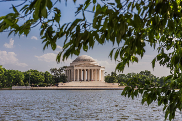 Trees frame the Jefferson Memorial at dusk in Washington DC