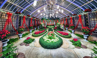 Panorama of the Poinsetta Room at Phipps Conservatory